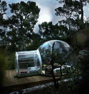 BubbleTent forest